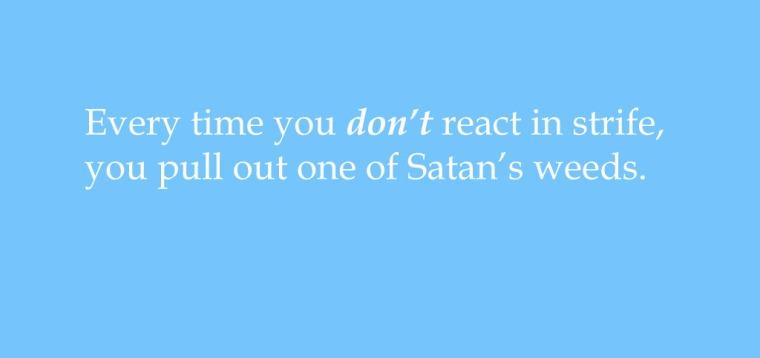satans_weeds